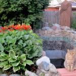 Сибирский колдун: котяра колдуна